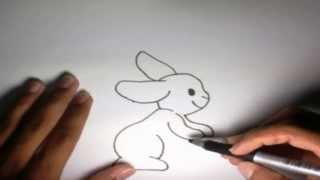 Como dibujar un Conejo l How to draw a Rabbit