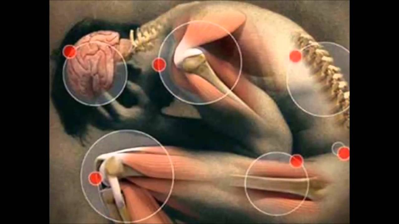 No hay suficiente flujo sanguíneo a los testículos