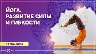 Йога для начинающих. Видео уроки. Практика йоги у дерева Бодхи. Антон Чудин