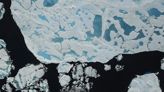 Baixar NASA Measuring Sea Ice at the Peak of Melt