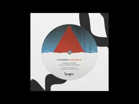 Ilija Rudman - Hibiscus Theatre (Trigonometry EP)