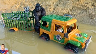 Learn Wild Animals Names with Tractor crossing on Deep Water Transport  | Learning Animal For Kids