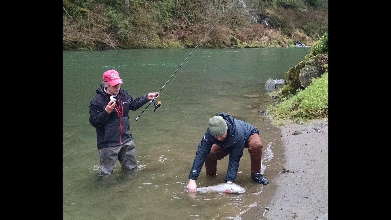 Fishing guide kalama side drift steelhead 1 23 2015 youtube for Kalama river fishing