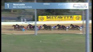 NEWCASTLE - 21/11/2014 - Race 1 - NBN TELEVISION PACE