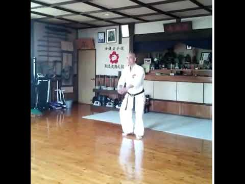 Saifa gojuryu karate shihan Hirakawa 【沖縄剛柔流空手道 尚禮館 平川師範 】