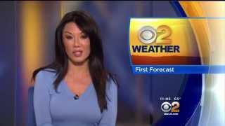 Sharon Tay 2015/05/25 CBS2 Los Angeles HD