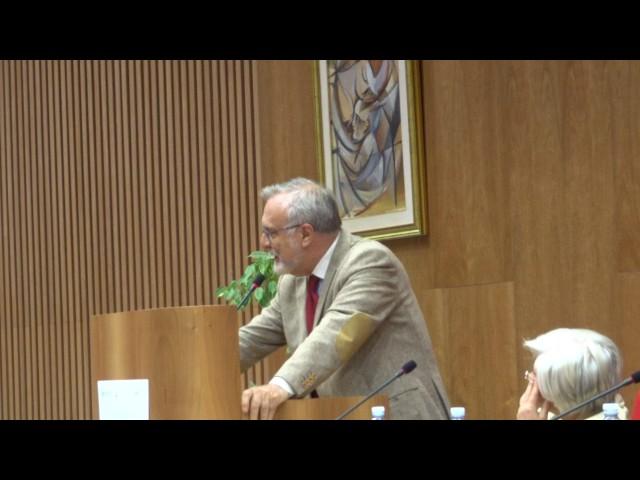 Dibattito II sessione