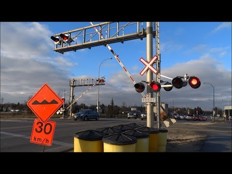 Idiots Vs. Rails: People Ignoring Railway Signals and Beating Trains to Save a Few Minutes