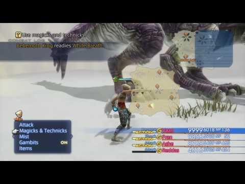 Final Fantasy 12 behemoth king hunt