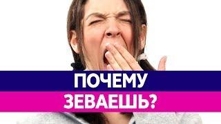 почему зевота бывает заразительна? Почему человек зевает?
