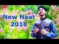 New Naat -Muhammad Jahanzaib qadri Naat-beautifull Naat 2017 -HD Punjabi Naat|