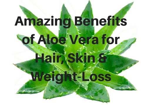 amazing-benefits-of-aloe-vera-for-hair,-skin-&-weight-loss