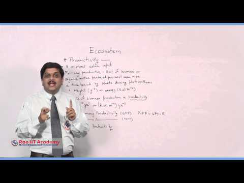 Eco System Part 1 - NEET AIPMT AIIMS Botany Video Lecture