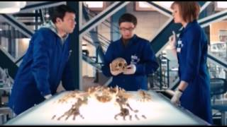 FX-Rebis Муляжи для сериала «Кости»