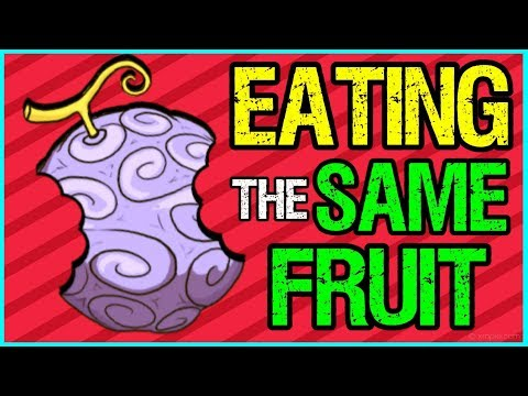 Eating The Same Fruit + More Devil Fruit Theories  - One Piece Discussion