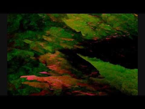 Infected Mushroom The Messenger Video