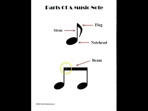 What Are The Parts Of A Music Note?