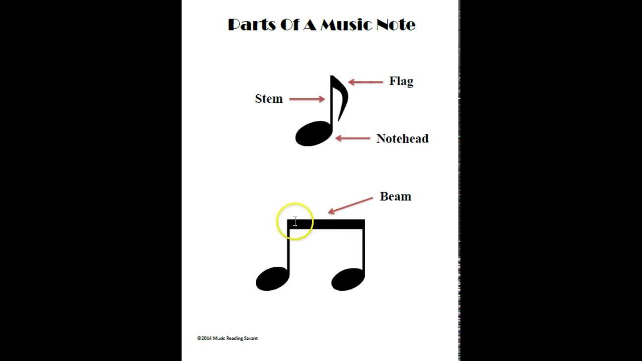 what are the parts of a music note youtube