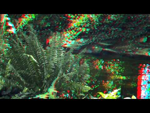 3D Video for Red/Blue glasses: Anaglyph.