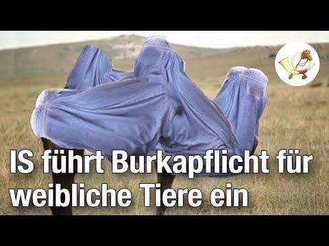 IS führt Burkapflicht für weibliche Tiere ein [Postillon24]