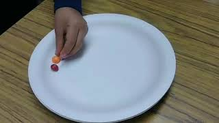 Skittles Science Project at Wagner Preschool
