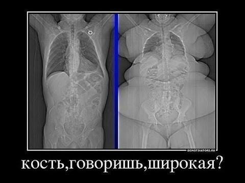 Сгонка веса, спортивная одежда для похудения, купить костюм-сауну по цене от 1500 рублей в москве с доставкой. В наличии большой выбор брендов, моделей, размеров.
