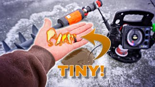 TINY vs. BIG Lures Ice Fishing CHALLENGE!!! (Unexpected Catch)