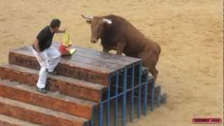 Repeat youtube video 4º TORO I CONCURSO DE GANADERIAS EN CASCANTE (NAVARRA) 27-05-2012
