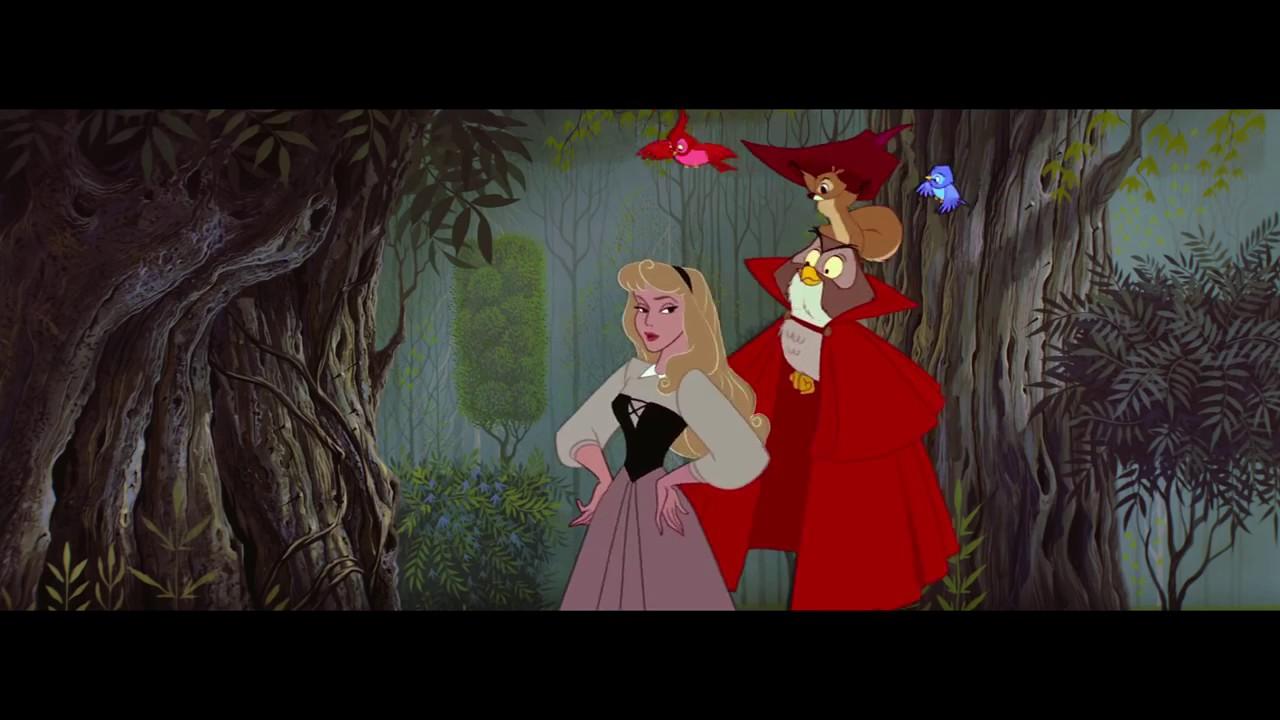 Спящая красавица картинки советского мультфильма, букеты большие анимация