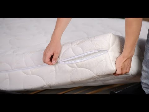 How to get rid of bed bugs on mattress-Pictures/Images