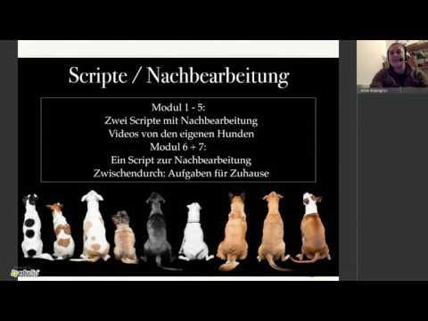 Dogwalker werden! - Info Webinar zu Sanny's Dogwalker Ausbildung 06/2017