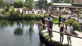 山梨県忍野村の名勝 忍野八海。 富士の湧水で有名です。 富士山の見える...