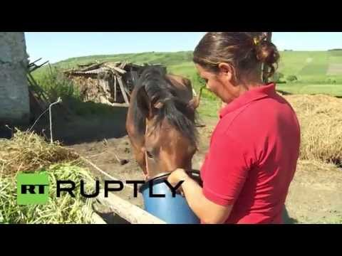 Romania: Farmers struggling as foreign investors drive up land prices