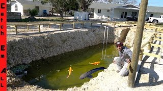 BUILDING Deep STONE PIT POND **Massive NEW FISH Added**