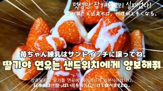 (日本語)일본 편의점 타마고 샌드위치다~깊은맛과 부드러…