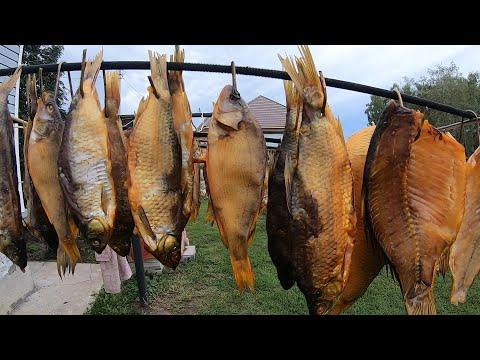 Рыба Сухого Посола Копчение Рыбы Холодным Копчением