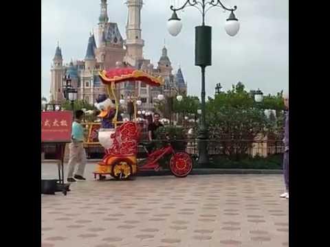 Tai Chi with Character Full - Shanghai Disneyland
