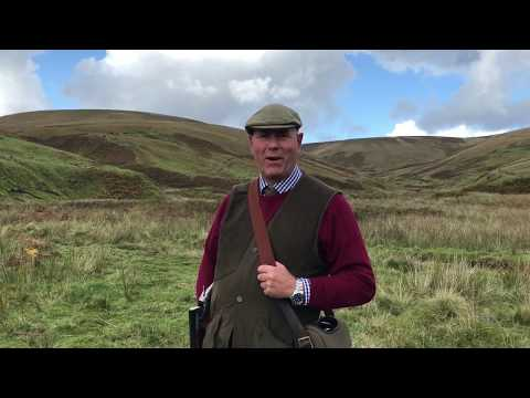 Extreme Partridge Shooting at Langholm 30th September 2017