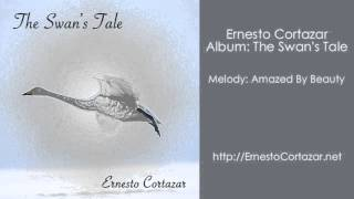Video Amazed By Beauty - Ernesto Cortazar download MP3, 3GP, MP4, WEBM, AVI, FLV Agustus 2018