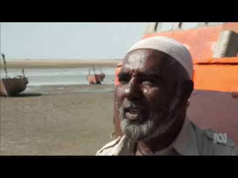Fishers in India say Adani's port & power plant kills sea life & spreads coal dust