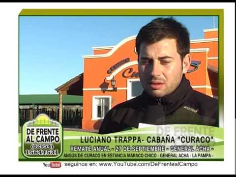 DE FRENTE A CAMPO junto a CABAÑA CURACO de CURACO S.A. - YouTube