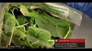 Салатные листья в упаковках: польза или вред?