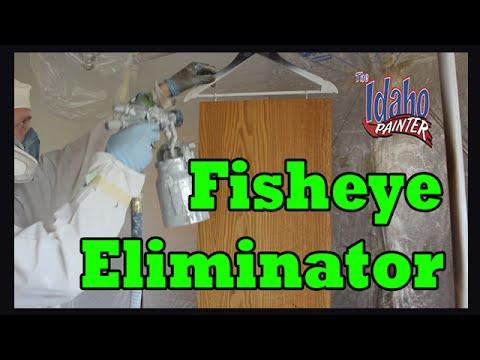 Fisheye Eliminator Hacks.  What Is Paint Fisheye?