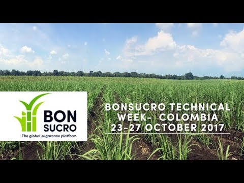Bonsucro Technical Week – Cali, Colombia – October 2017