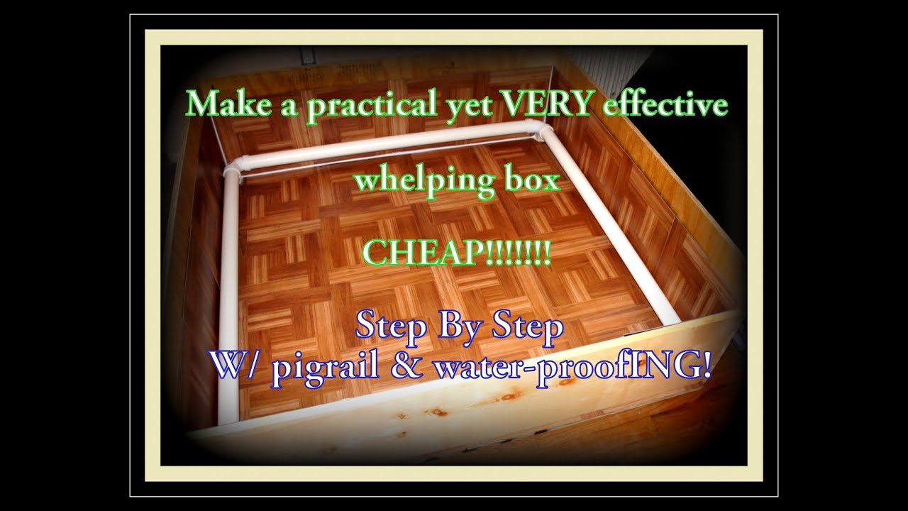 Making A Whelping Box Easy Step By Guide With