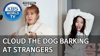 Cloud the dog barking at strangers [Dogs are incredible/ENG/2020.04.14]