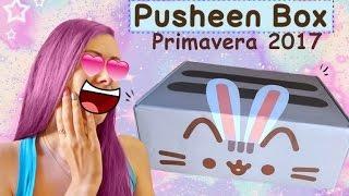 Pusheen Box Primavera 2017 *-*