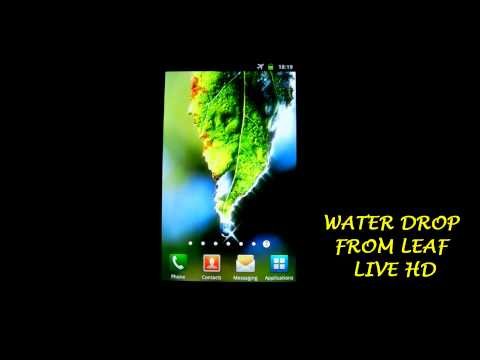 Water Drop From Leaf Live Wallpaper HD