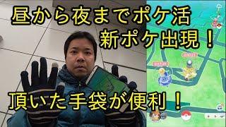 【ポケモンGO】昼から夜までポケ活!レイドに新ポケ登録!手袋大活躍!