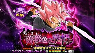 SUPER SAIYAN ROSE GOKU BLACK NEW BOSS STAGE SUPER2 NO ITEMS & STONES | DBZ Dokkan Battle